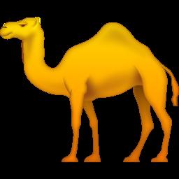 Camel PNG HD