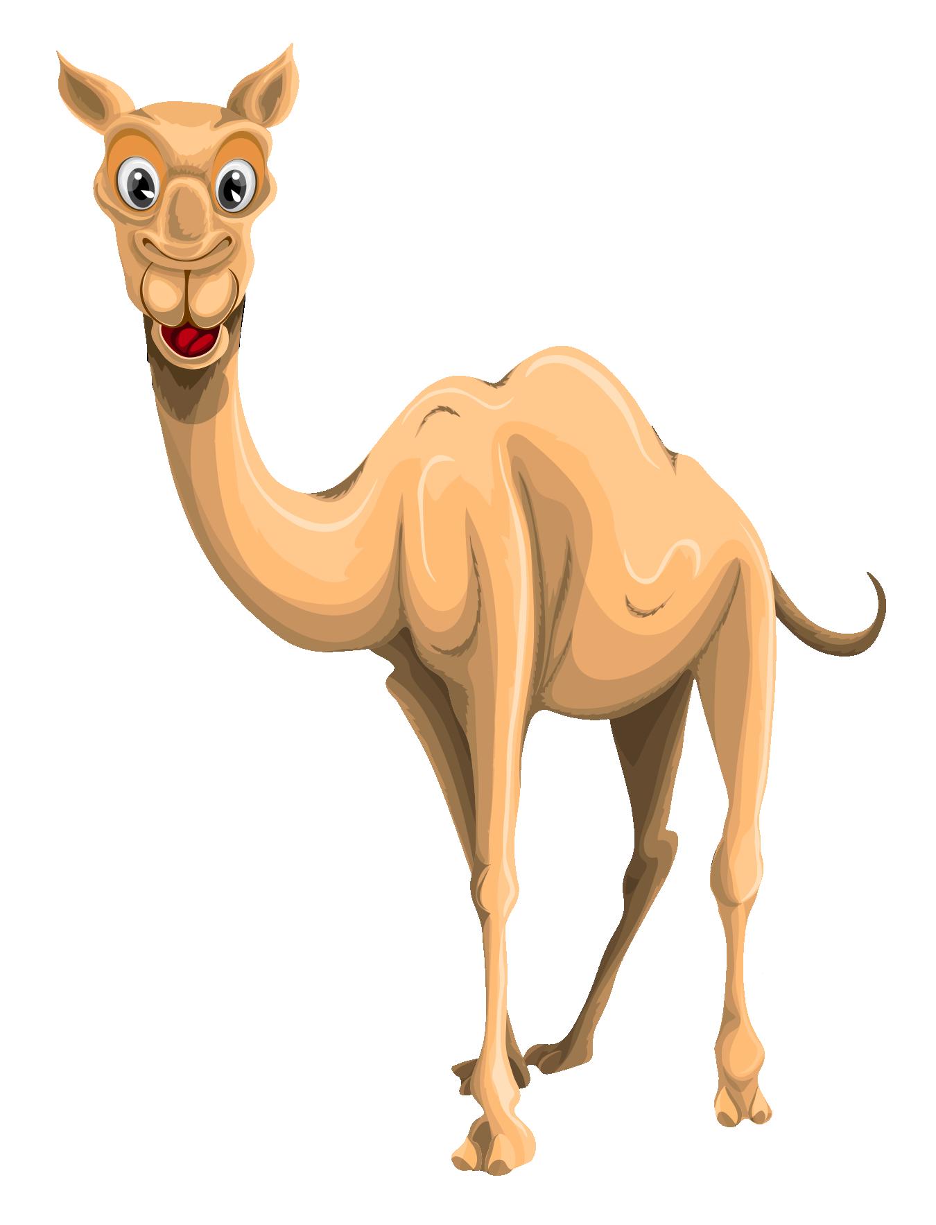 Camel Vector PNG Transparent