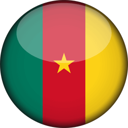 Cameroon flag image - free download - Cameroon PNG