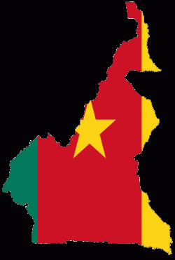 Cameroon Flag Map - Mapsof.Net Map - Cameroon PNG
