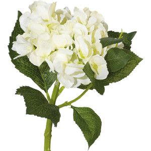 OKA Faux Mop Head Hydrangea Flower Stem, Short - Camia Flower PNG