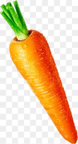 Carrot HD PNG - 117309