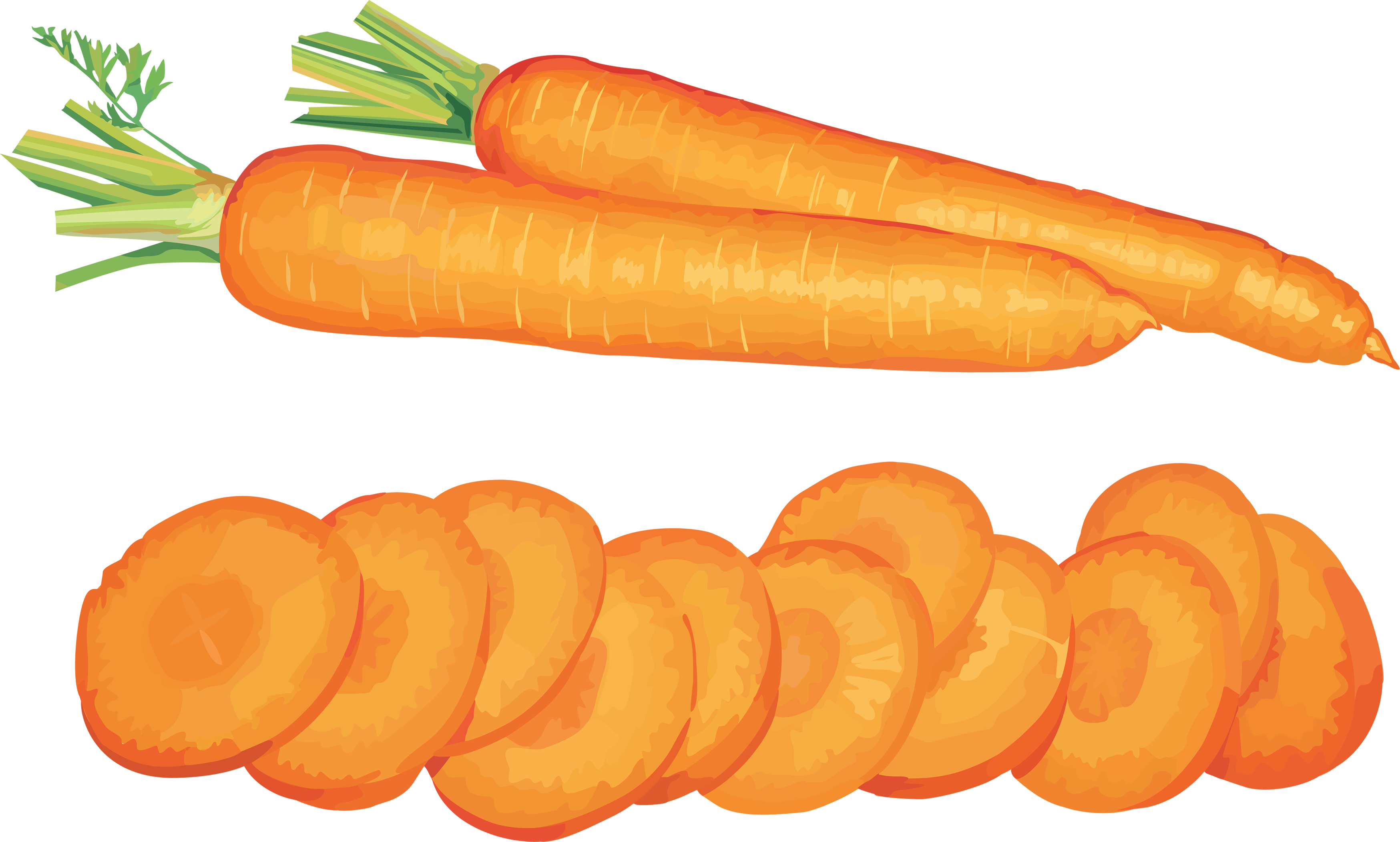 Carrot Icon PNG 51219 - Carrot HD PNG