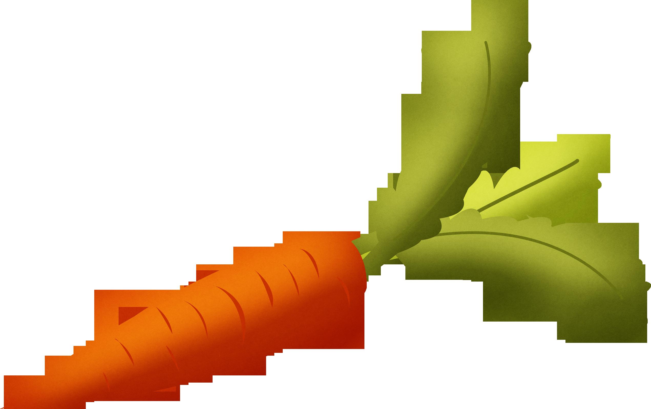 Carrot HD PNG - 117305