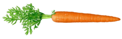 Carrot HD PNG - 117303
