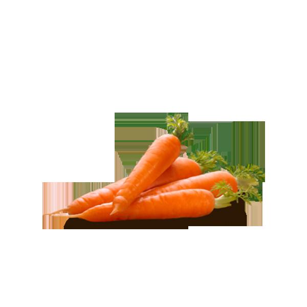 Carrot HD PNG - 117307