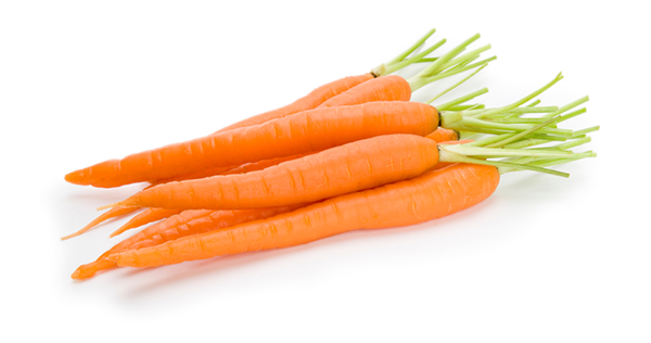 Carrot PNG - 19926