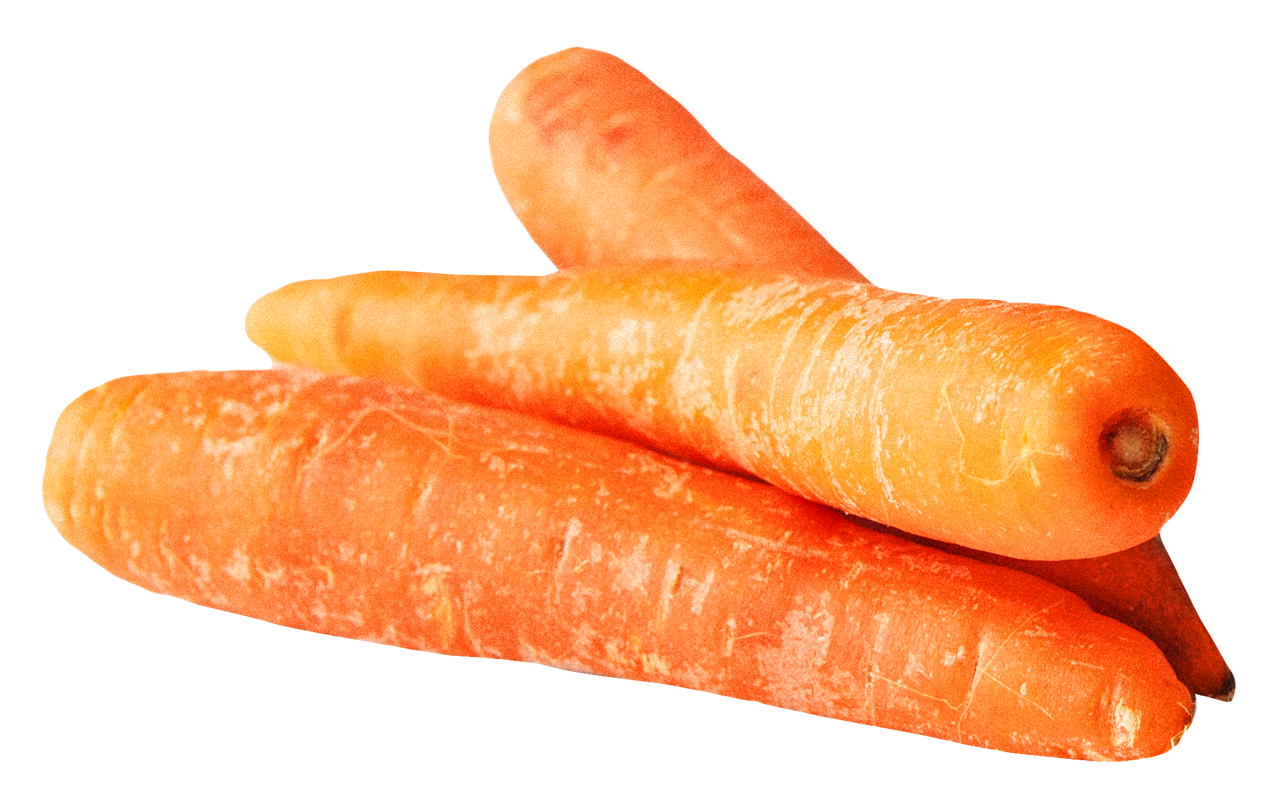 Carrot PNG - 19917