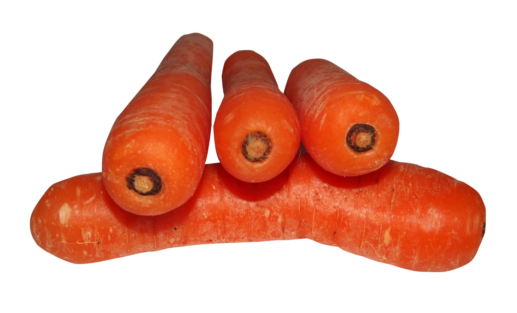 Carrot PNG - 19923