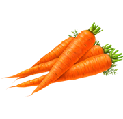 Carrot PNG - 19925