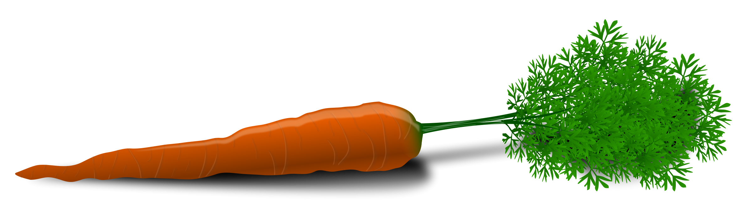 Carrot PNG - 19916