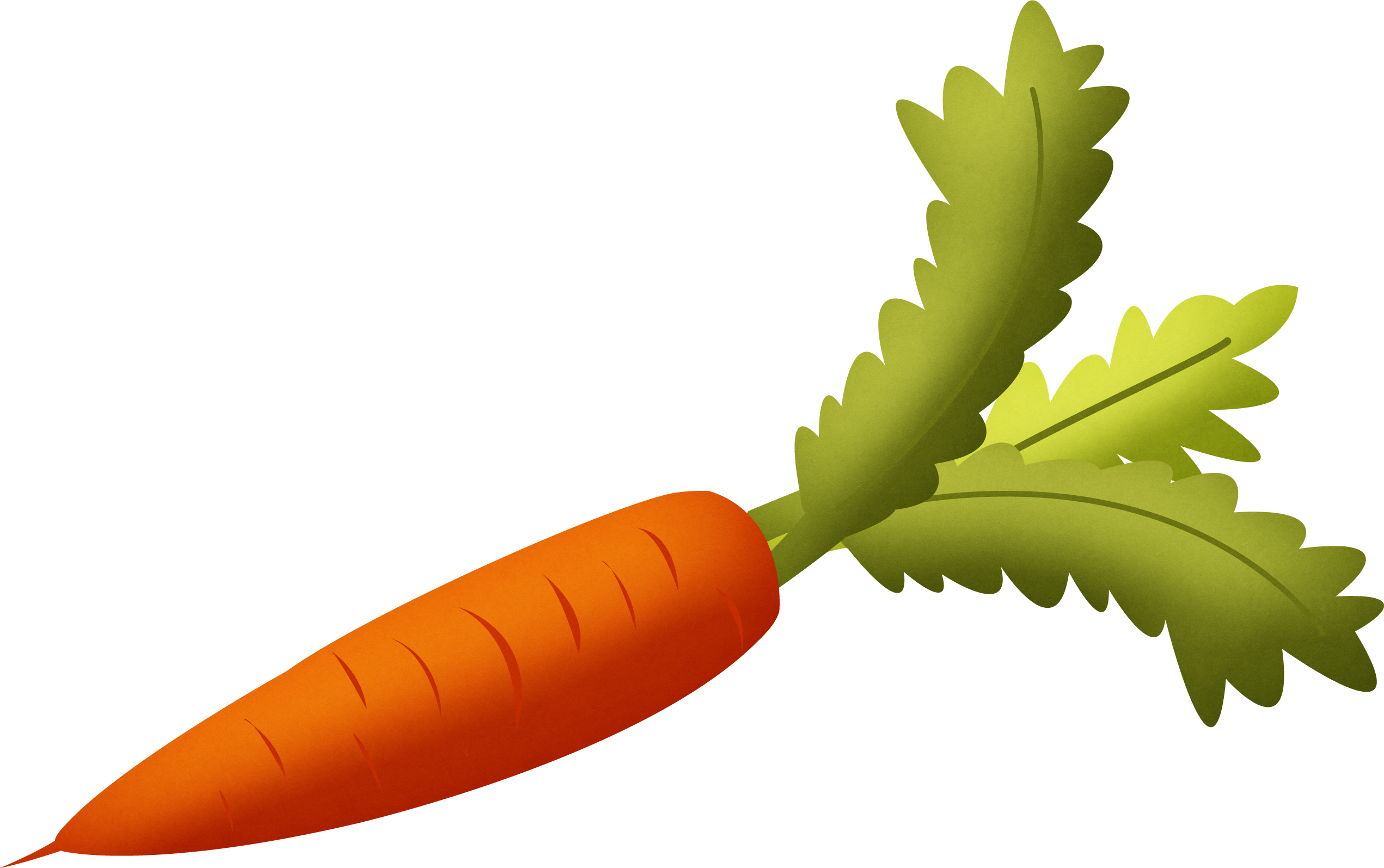 Carrot PNG - 19912