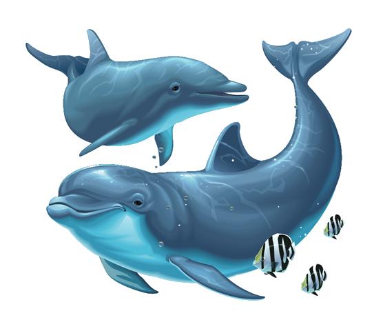 Cartoon Dolphin PNG HD - 124598