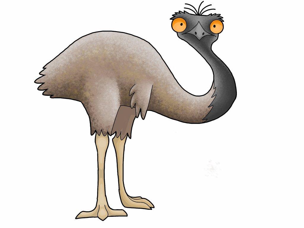 701b769.png - Cartoon Emu PNG