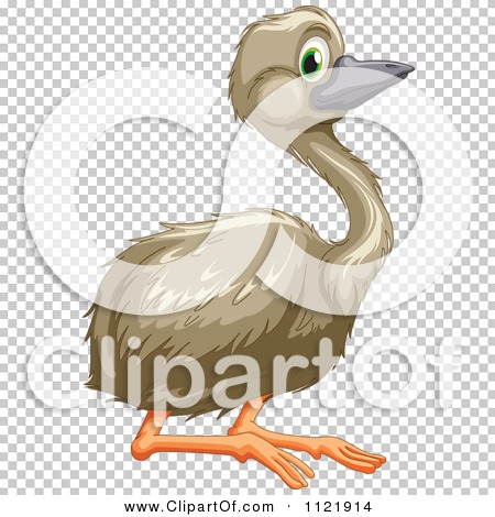 Cartoon Emu PNG - 64422
