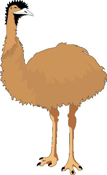 Cartoon Emu PNG - 64412