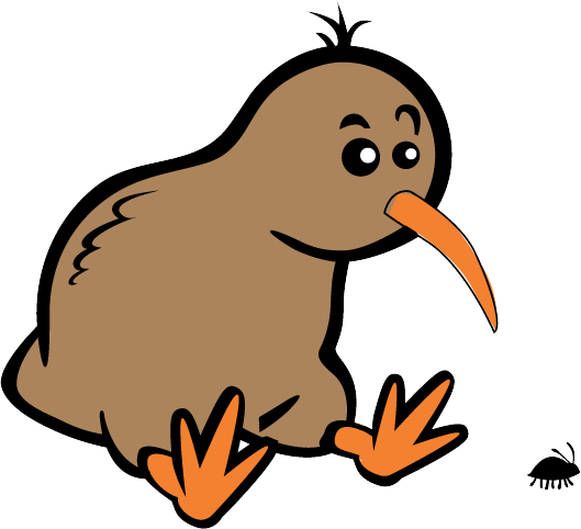 Beyond Kiwis - Cartoon Kiwi Bird PNG