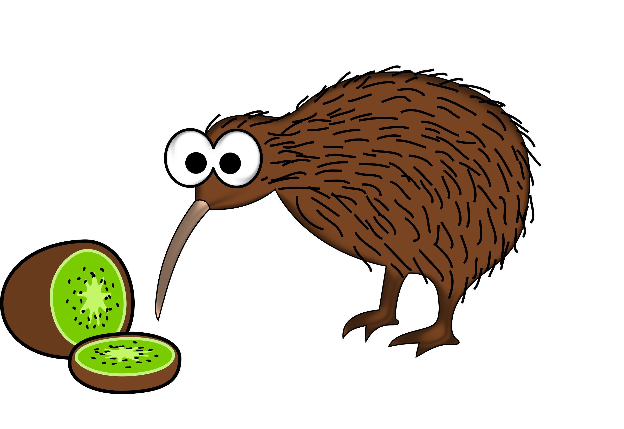 BIG IMAGE (PNG) - Cartoon Kiwi Bird PNG