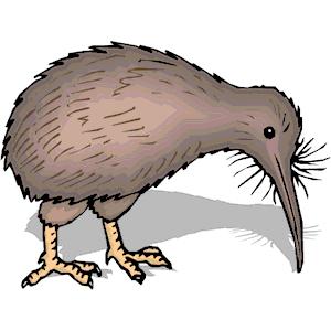 Cartoon Kiwi Bird PNG - 89032