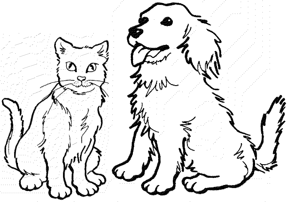 1000x700 Cool Coloring Pages Dogs Cats Cool Coloring Pages Dog - Cat And Dog PNG Black And White