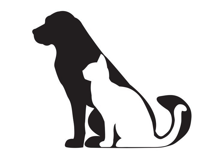 Black silhouette of dog and white cat isolated on white Wall Decal ✓ Easy  Installation ✓ - Cat And Dog PNG Black And White