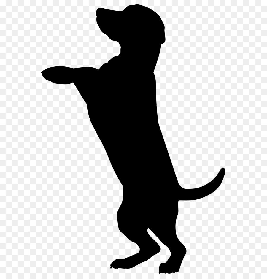 Boxer Dobermann Cat Pet sitting Silhouette - Dog Silhouette PNG Clip Art  Image - Cat And Dog PNG Black And White