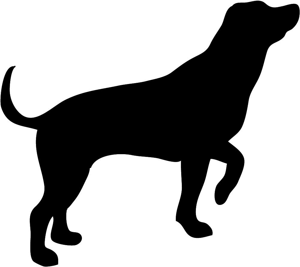 hunting dog silhouette PlusPng pluspng.com - Dog PNG Jpg - Cat And Dog PNG Black And White