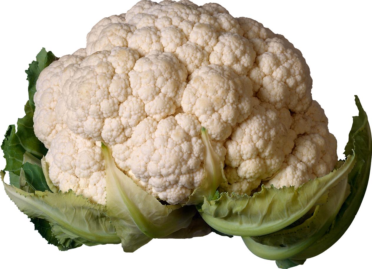 Cauliflower HD PNG-PlusPNG.com-1264 - Cauliflower HD PNG