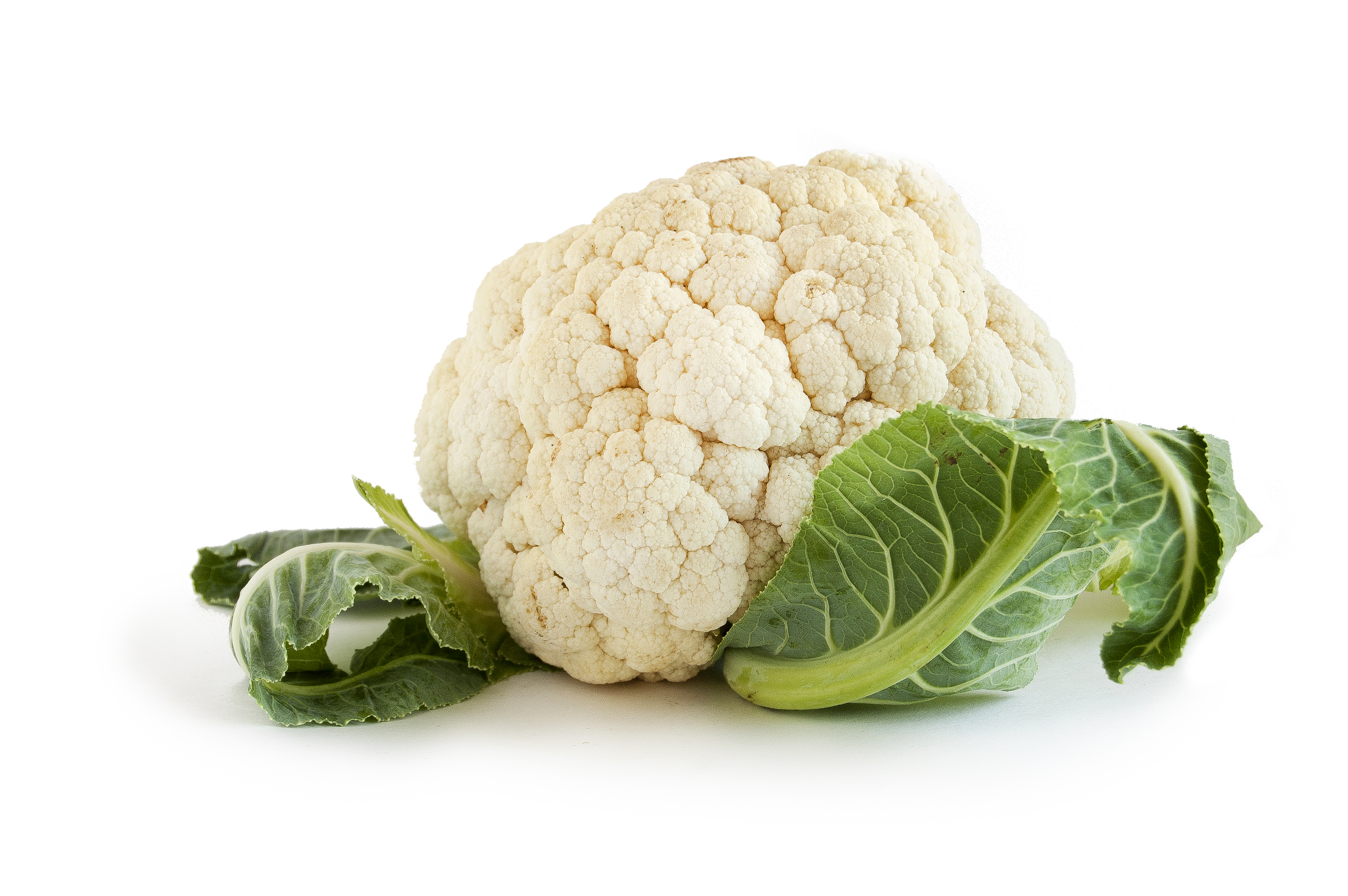 Cauliflower HD PNG-PlusPNG.com-3008 - Cauliflower HD PNG