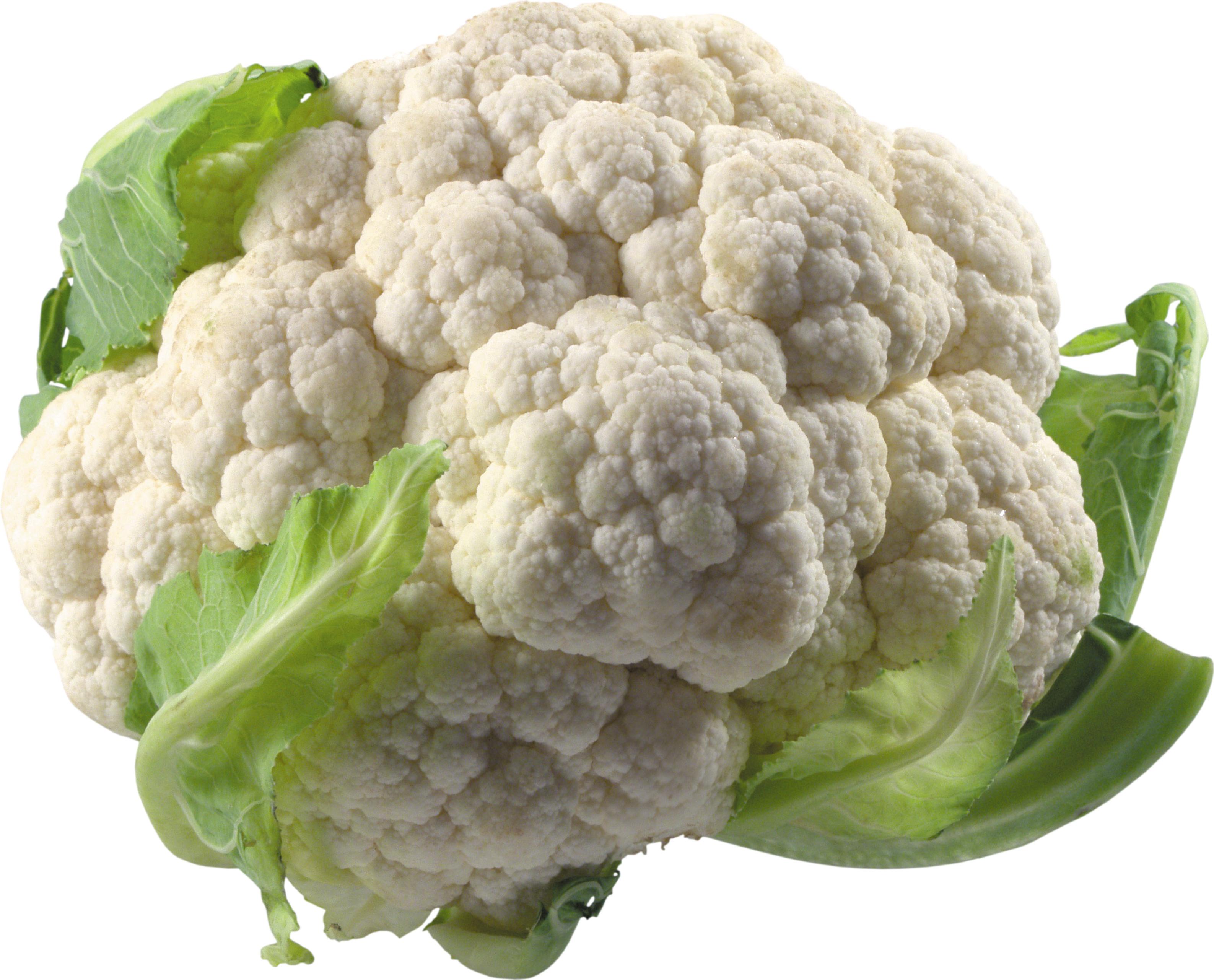 Cauliflower PNG - Cauliflower HD PNG