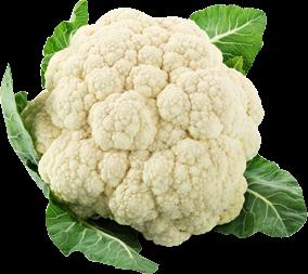 Cauliflower PNG Transparent Image - Cauliflower HD PNG