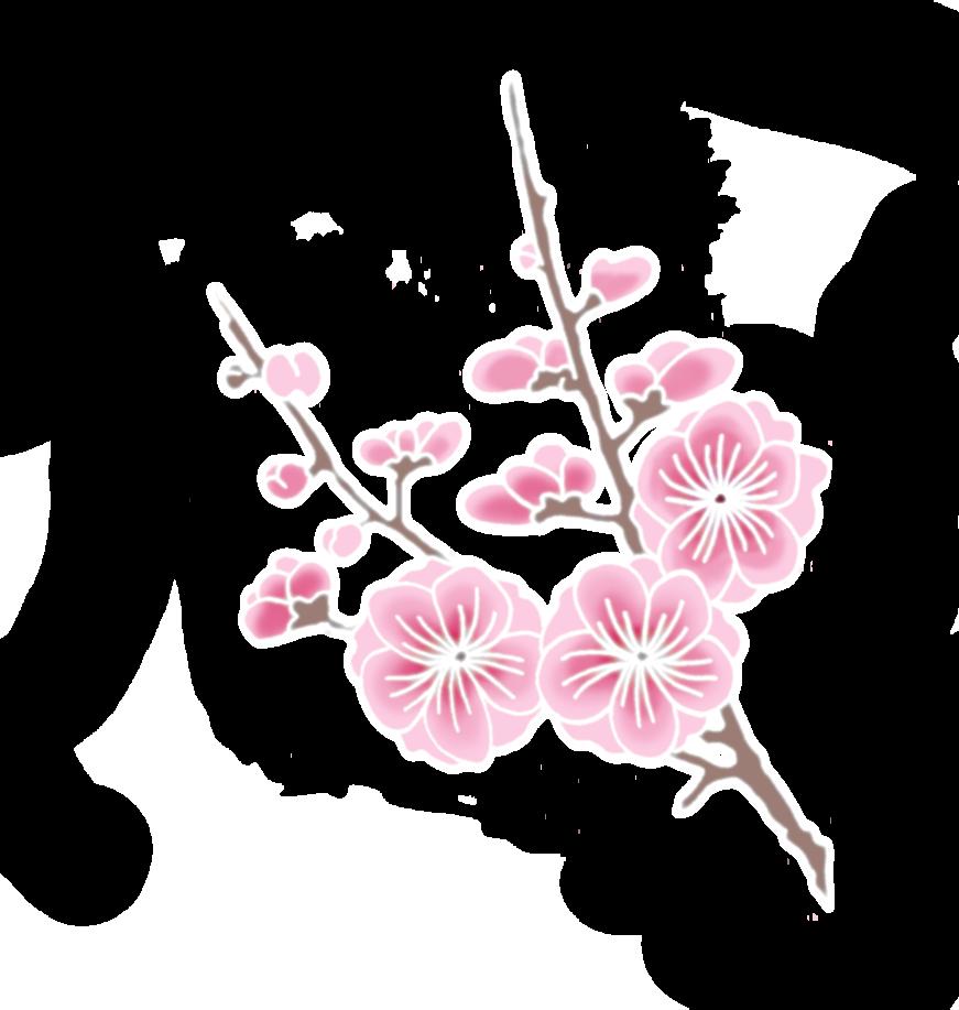 Cherry Blossom PlusPng.com  - Cherry Blossom PNG HD