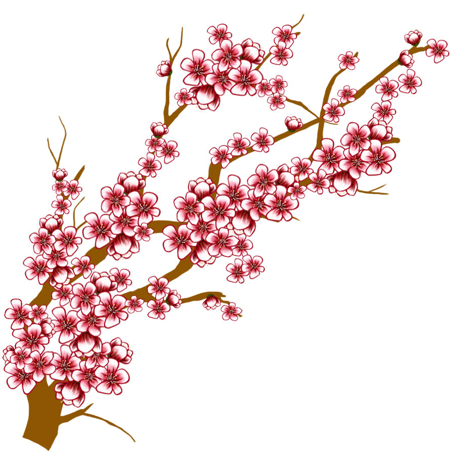 Cherry Blossom Tree Branch TEXTURE by GKWill PlusPng.com  - Cherry Blossom PNG HD