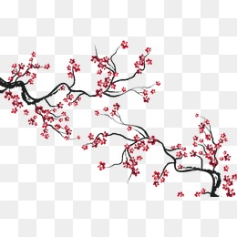 cherry blossoms, Cherry Blossoms, Decorative Background, Flowers PNG and  Vector - Cherry Blossom PNG HD