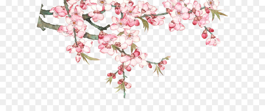 Download Pixel - Watercolor peach blossom peach tree - Cherry Blossom PNG HD