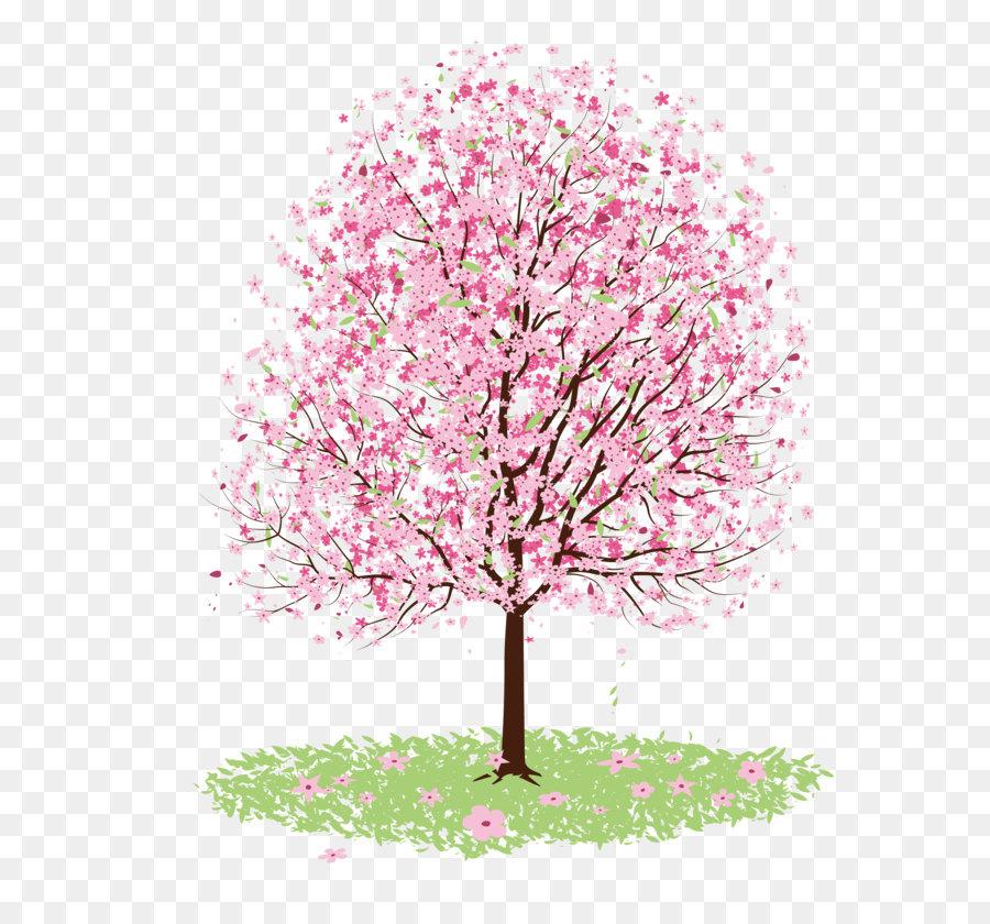 Cherry blossom Drawing Tree - Vector cherry tree - Cherry Blossom Tree PNG HD