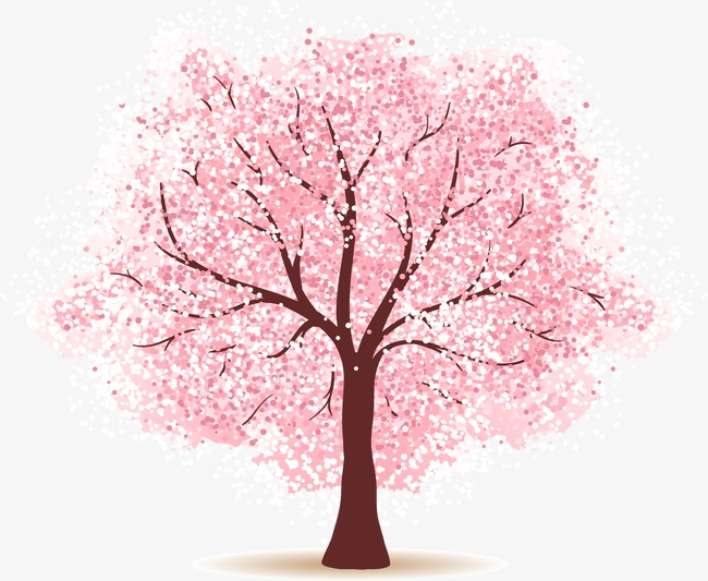 cherry tree, Cherry Blossoms, Tree, Trees PNG and Vector - Cherry Blossom Tree PNG HD