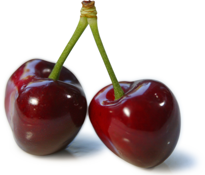 red cherry PNG image, free download - Cherry HD PNG