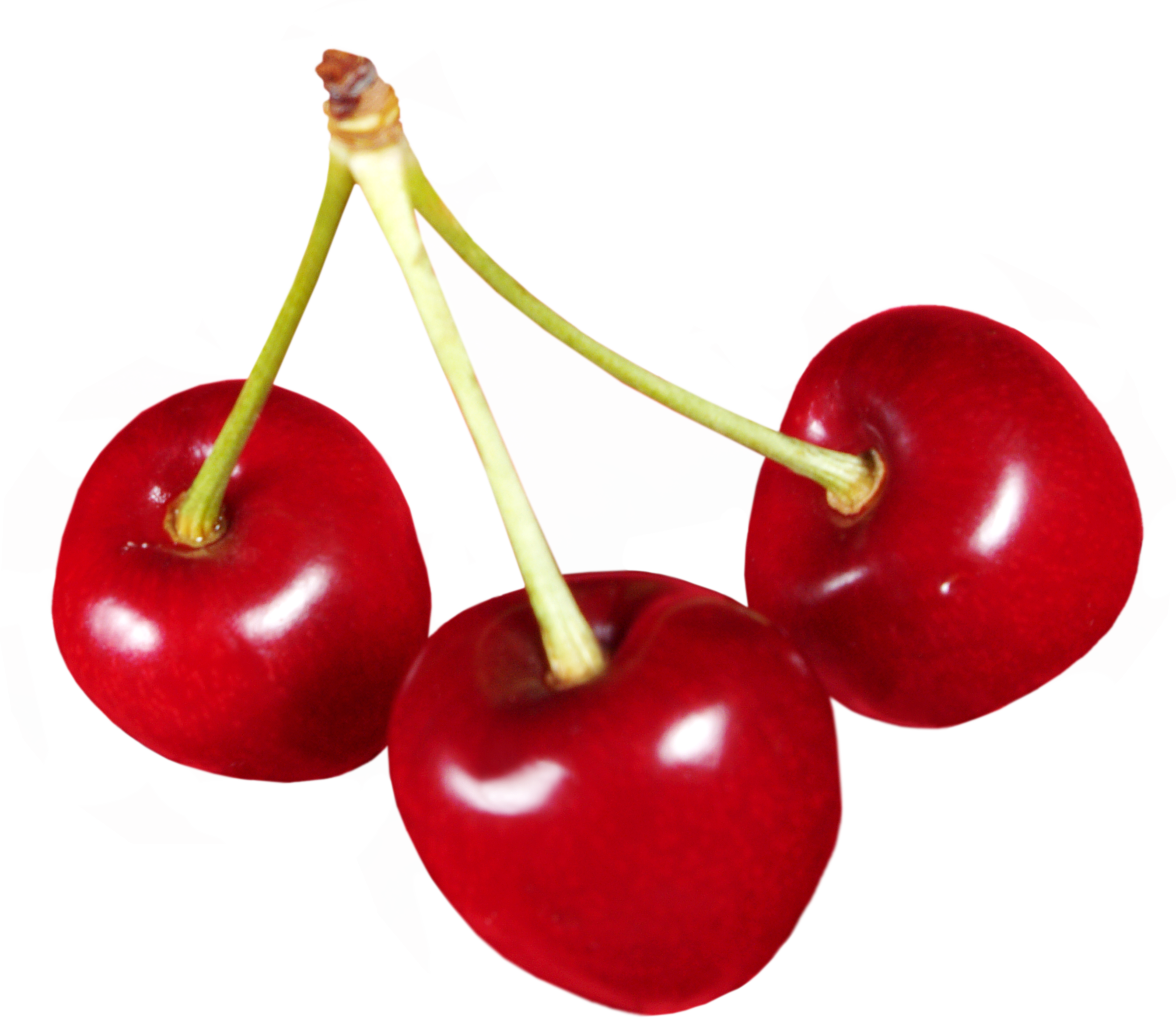 Cherry PNG - 26338