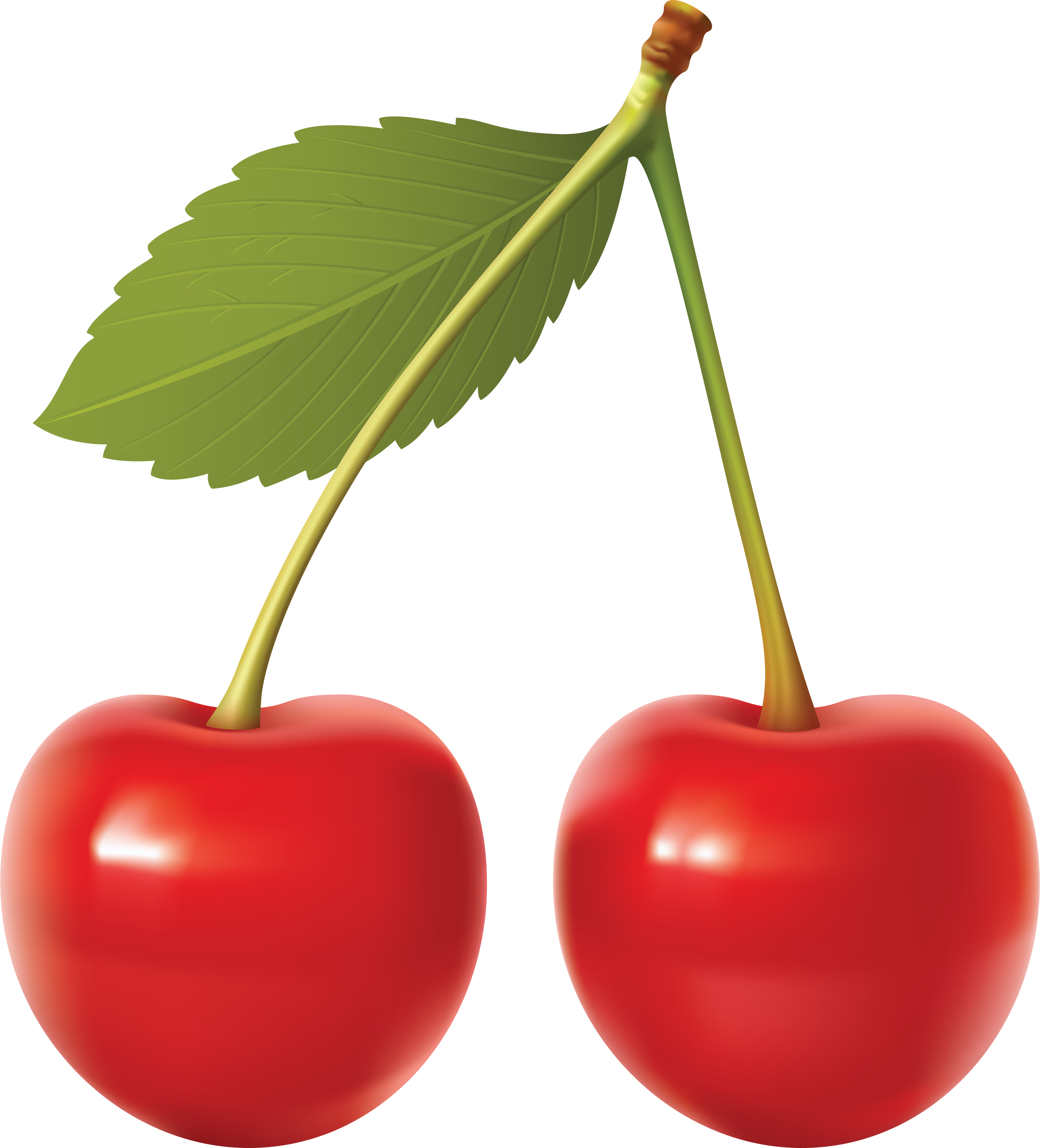 Cherry PNG - 26342