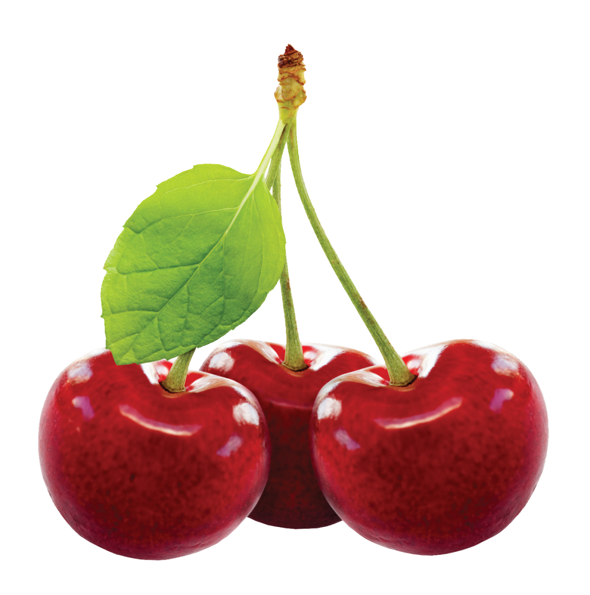 Cherry PNG - 26343