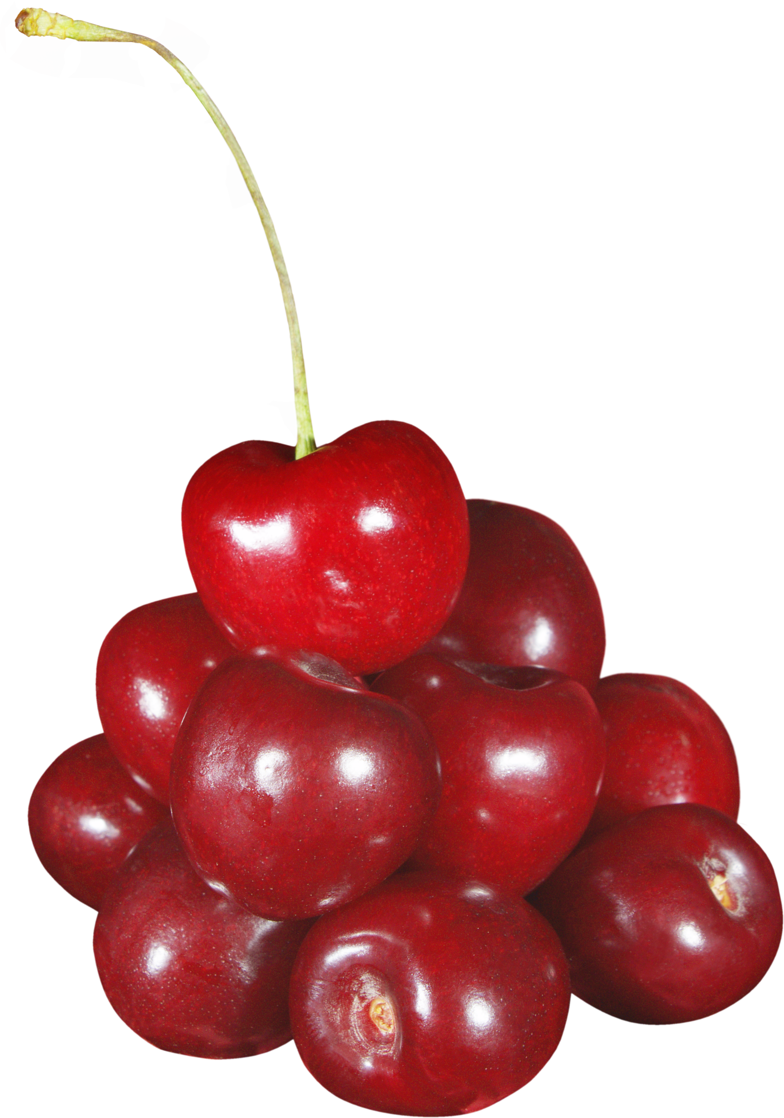 cherry PNG image - Cherry PNG