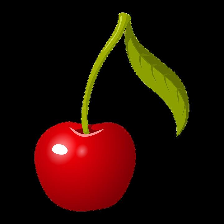 cherry stem fruit red ripe fresh healthy organic - Cherry PNG