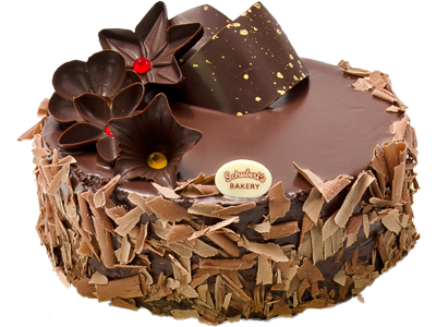 Chocolate Cake PNG HD