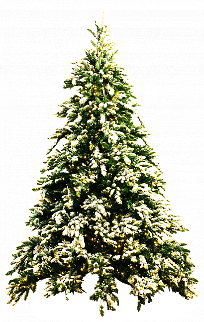 Christmas Tree PNG by dbszabo1 - Christmas Tree PNG