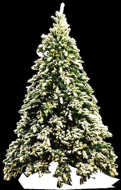 Christmas Tree PNG - 6124