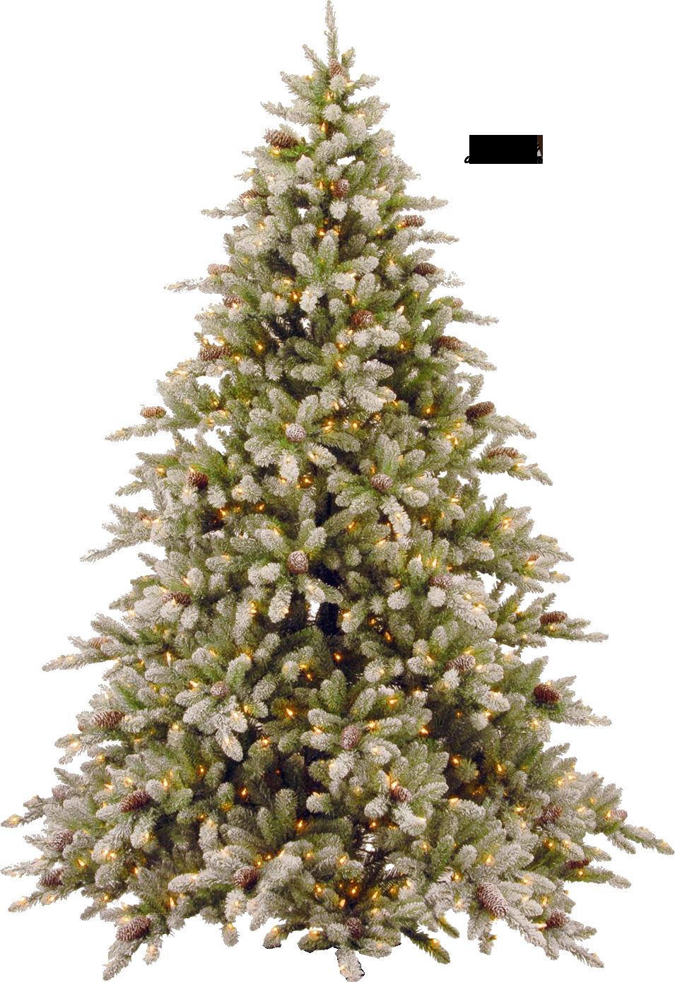 Christmas Tree PNG - 6116