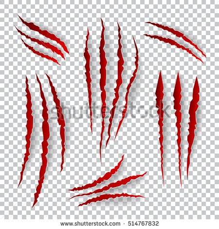 Realistic claw scratches. set on plaid background. Scratch claw animal and  illustration shred from - Claw Scratch PNG