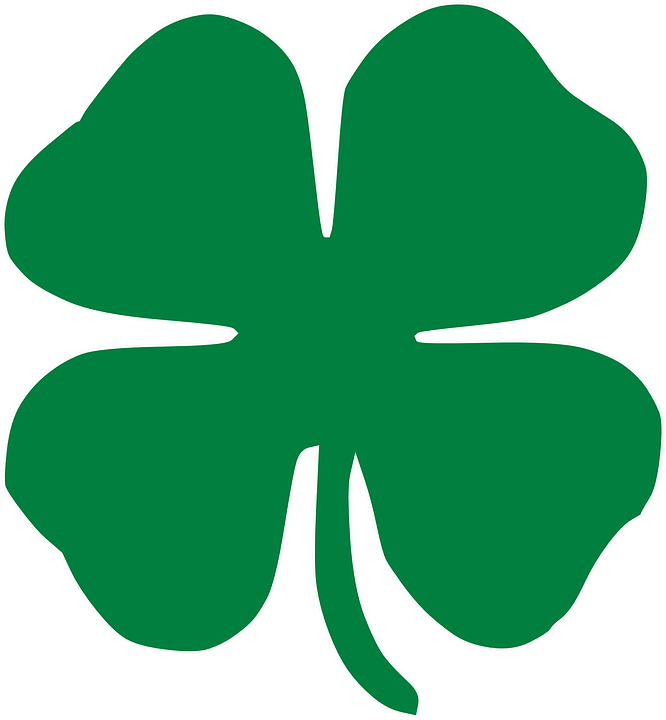 Shamrock, Clover, Leaf, Four, Luck, Lucky, Chance - Clover HD PNG