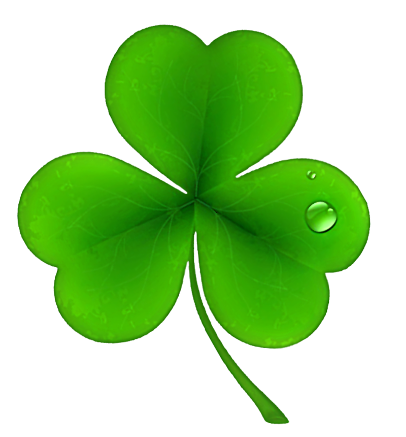 Clover PNG - 16169
